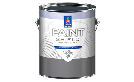 Paint Shield